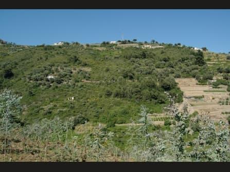 Sanremo villa à vendre