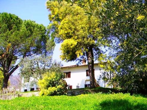 Montecatini Villa For Sale