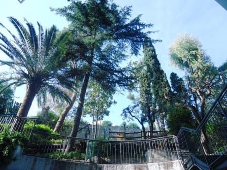 Bordighera Apartment For Sale