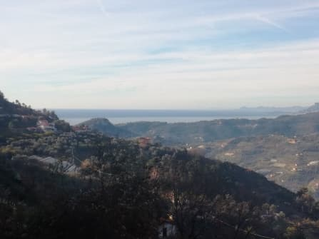 Vallebona loc. San Martino terreno in vendita