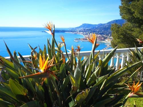 Ventimiglia, villa in vendita vista mare