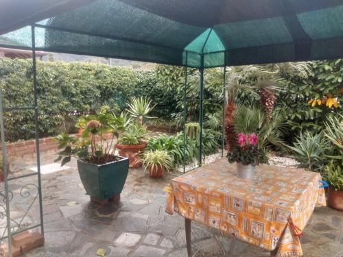 Camporosso apartment with garden