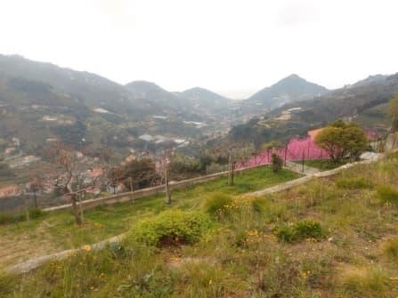 Soldano building land with sea view