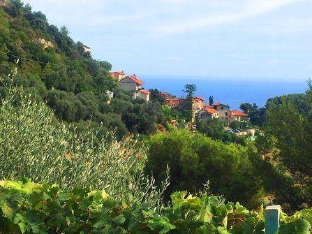 Ventimiglia house seaview for sale