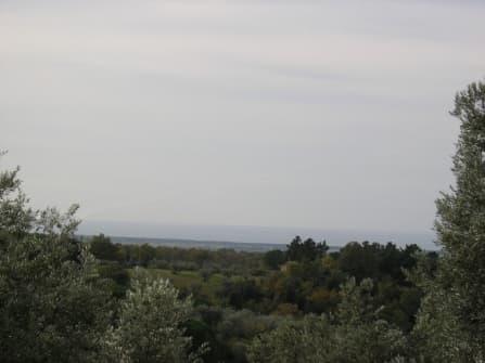 Тоскана Пиза дом с земельным участком на прод...