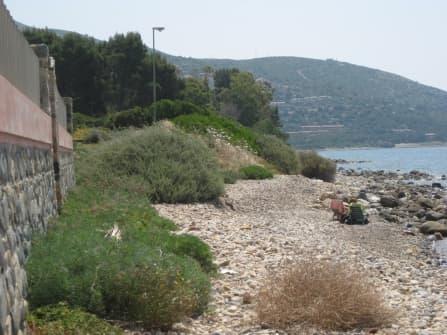 Costa smeralda villa in vendita sardegna villa di for Case sul mare sardegna vendita