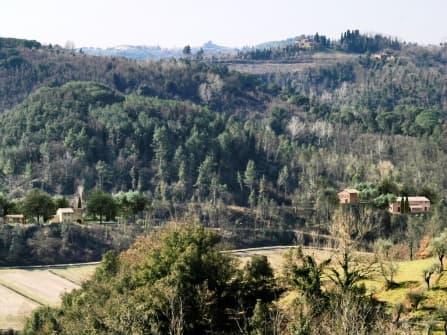 Palaia Building Land For Sale