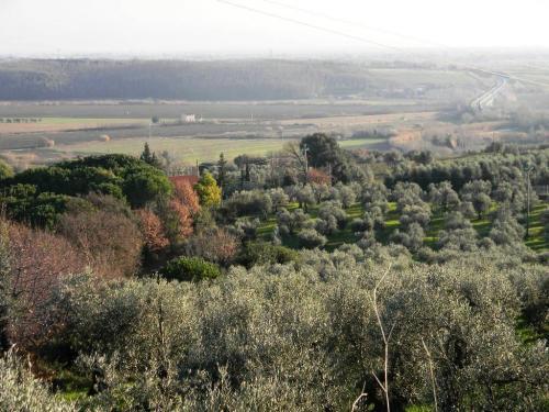 Rosignano Marittimo Villa For Sale
