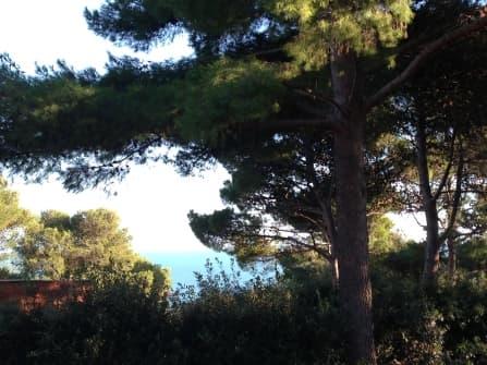 Вилла на продажу Анседония Тоскана