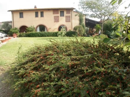 Typical Tuscan villa for sale in Pisa