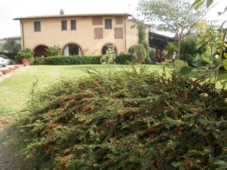Collonica in vendita in provincia di Pisa