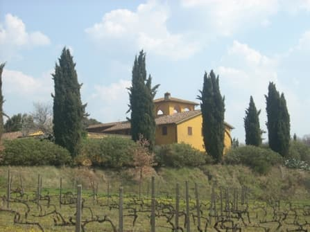 Agricultural estate and wineries