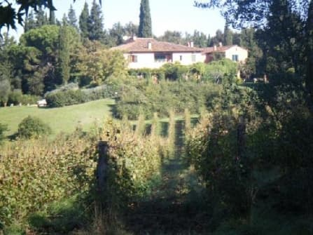 Agricultural estate with 170 hectares