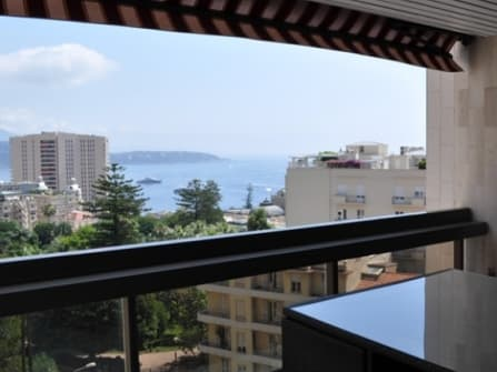 Chic apartment for sale in Monaco