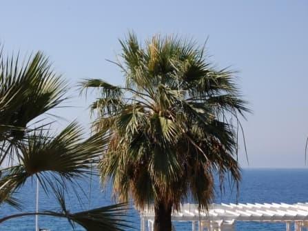 Fabulous apartment on Promenade des Anglais
