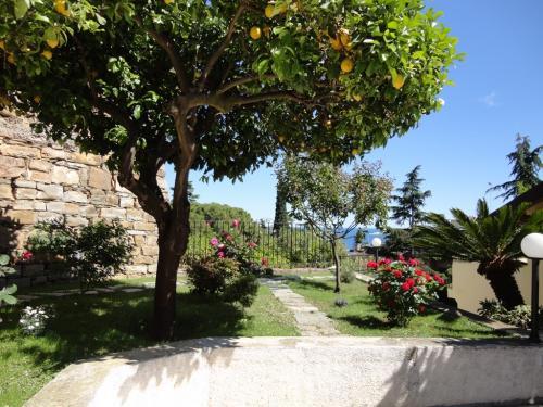 Квартира в Сан Ремо (Лигурия)