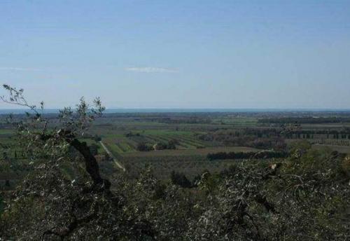 Холмы Кастаньето Кардуччи, Ливорно