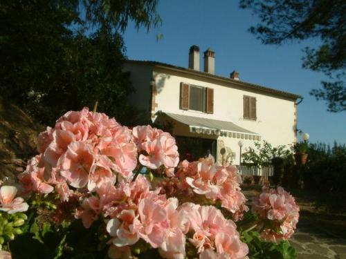 Вилла в Коллезальветти провинция Ливорно