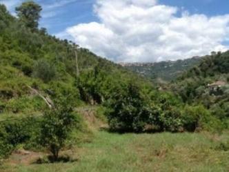Soldano Plot of Land For Sale