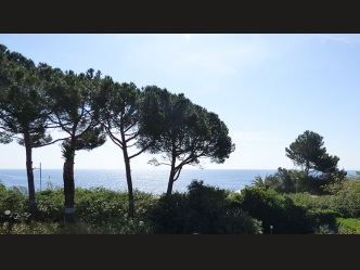 Waterfront Villa For Sale in Sanremo