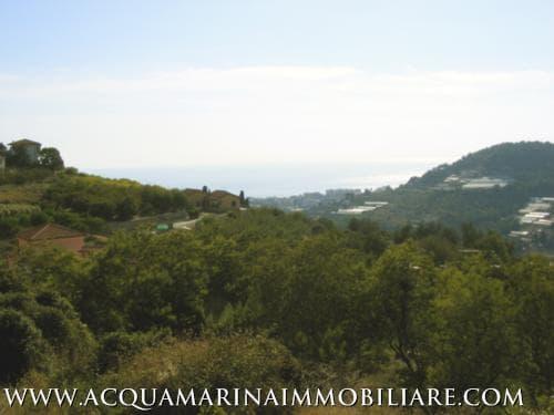 Terreno Vista mare Bordighera<br />7/8