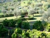 Monsummano Villa for sale<br />8/10