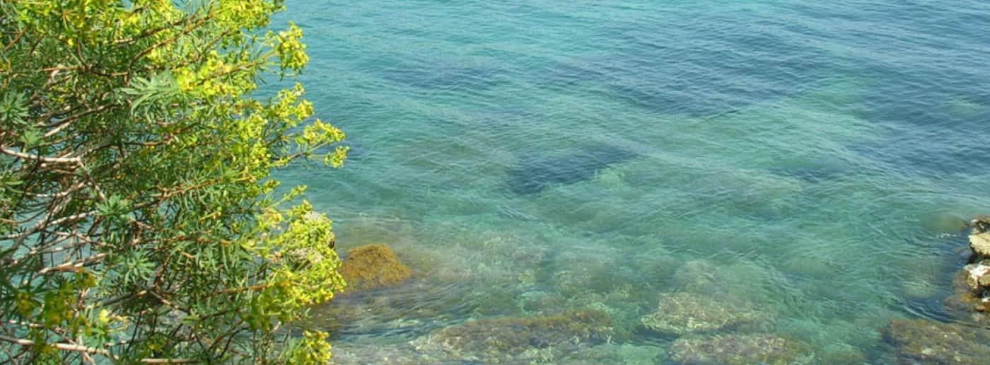 http://www.acquamarinaimmobiliare.com/immagini_immobili/th_slide/10116.jpg