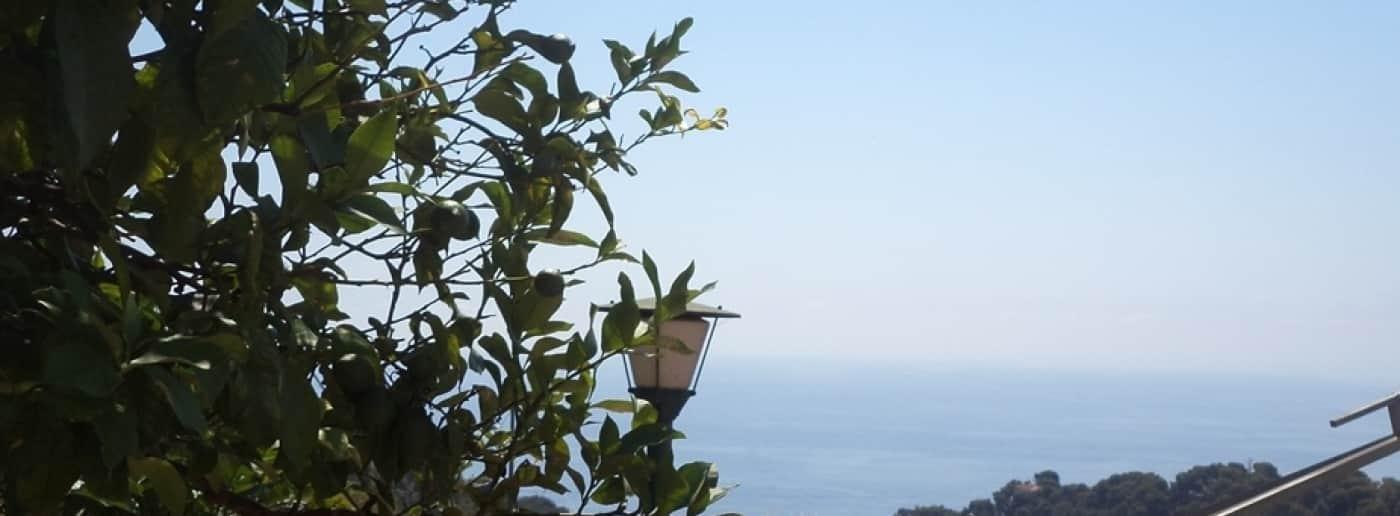http://www.acquamarinaimmobiliare.com/immagini_immobili/th_slide/10925.jpg