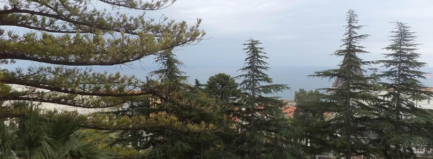 http://www.acquamarinaimmobiliare.com/immagini_immobili/th_slide/11051.jpg