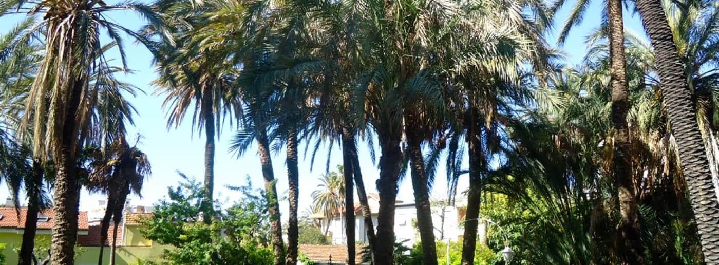 http://www.acquamarinaimmobiliare.com/immagini_immobili/th_slide/11082.jpg