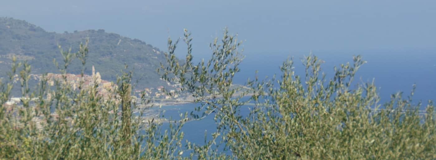 http://www.acquamarinaimmobiliare.com/immagini_immobili/th_slide/11541.jpg