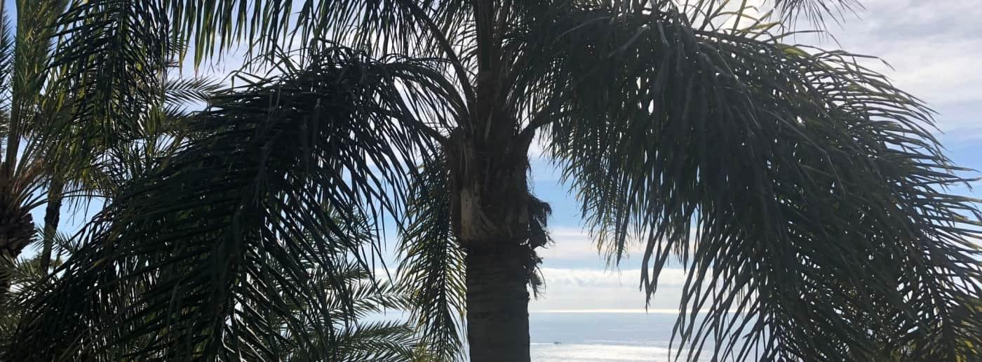 Bordighera villa vue mer en vente