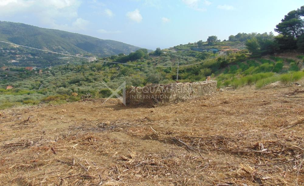 Vallebona land sale with rustic<br />1/9