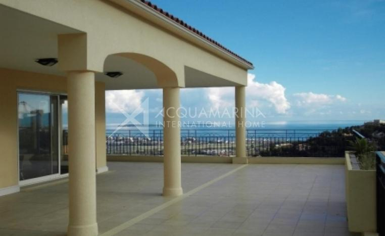 Mandelieu-la-Napoule Penthouse For Sale<br />1/2
