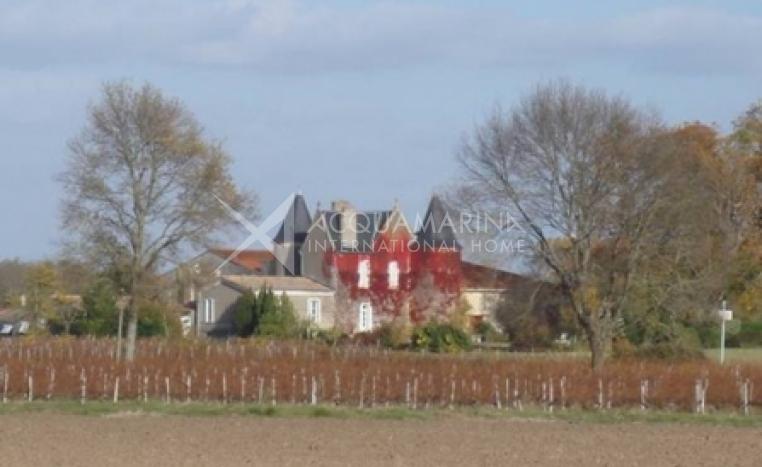 Bordeaux Chateau / Mansion For Sale<br />1/3