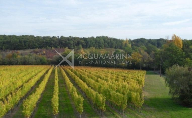 Aquitaine, Entre deux mers Vineyard For Sale<br />1/4
