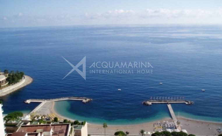 Monaco Apartment For Sale<br />1/1