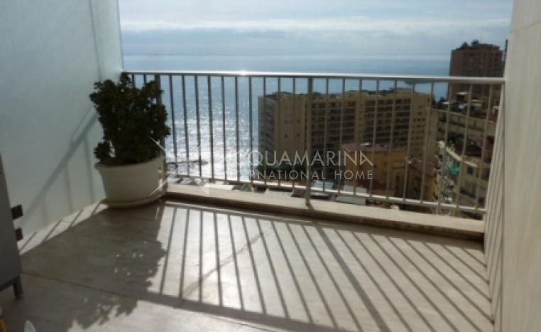 Monaco Apartment For Sale<br />1/1
